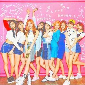 《k-pop》girl's ♡